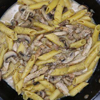 Creamy Chicken and Mushroom Pasta, Creamy Chicken and Mushroom Pasta