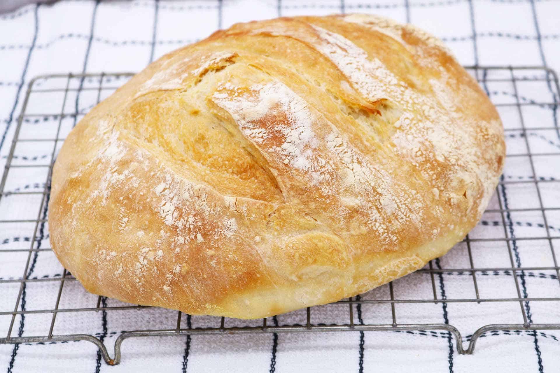 Crusty Bread, Crusty Bread
